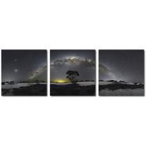 GalleryAstro Triptyque Arche étoilée en Australie de Camille Niel ©AFA